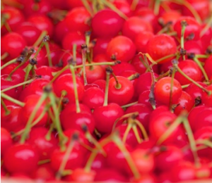 Fresh cherries, very tasty