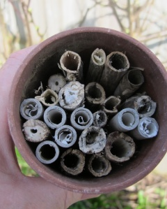 A mix of ready made tubes and dry plant stalks