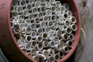 12 cm bee nest