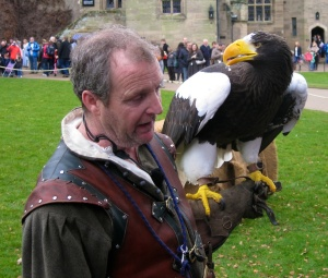 Eagle with handler Warwick Castle