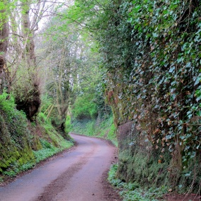 The lane that takes you to the village square